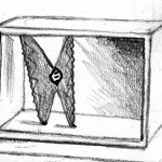 mothponorbox
